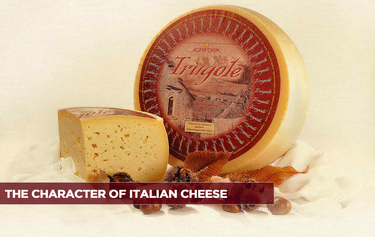 The Character Of Italian Cheese
